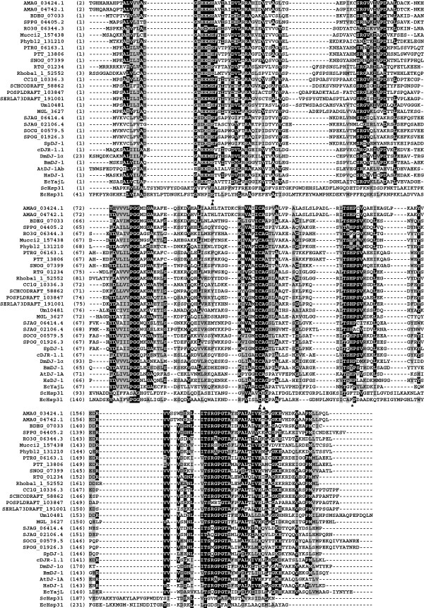 http://static-content.springer.com/image/art%3A10.1186%2F1471-2148-14-86/MediaObjects/12862_2014_2570_Fig1_HTML.jpg