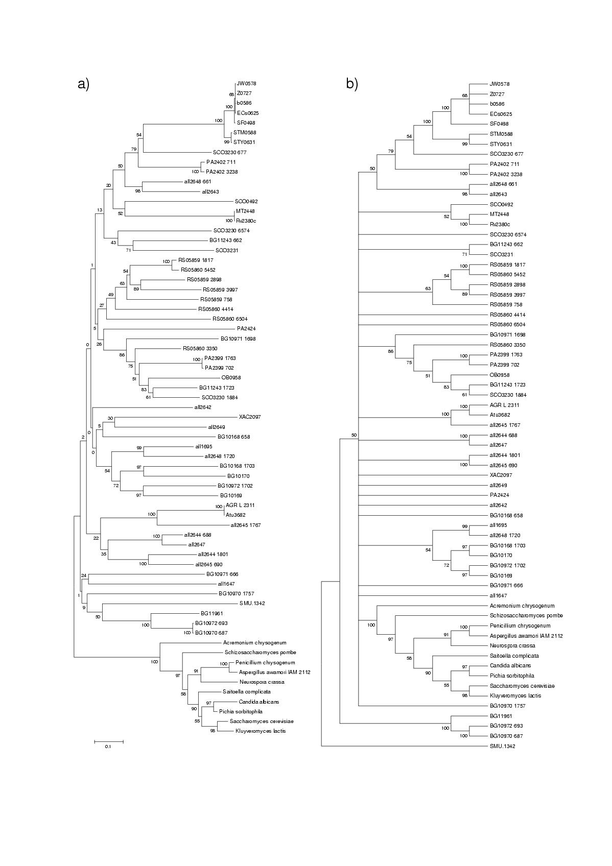 http://static-content.springer.com/image/art%3A10.1186%2F1471-2148-3-9/MediaObjects/12862_2002_Article_43_Fig1_HTML.jpg
