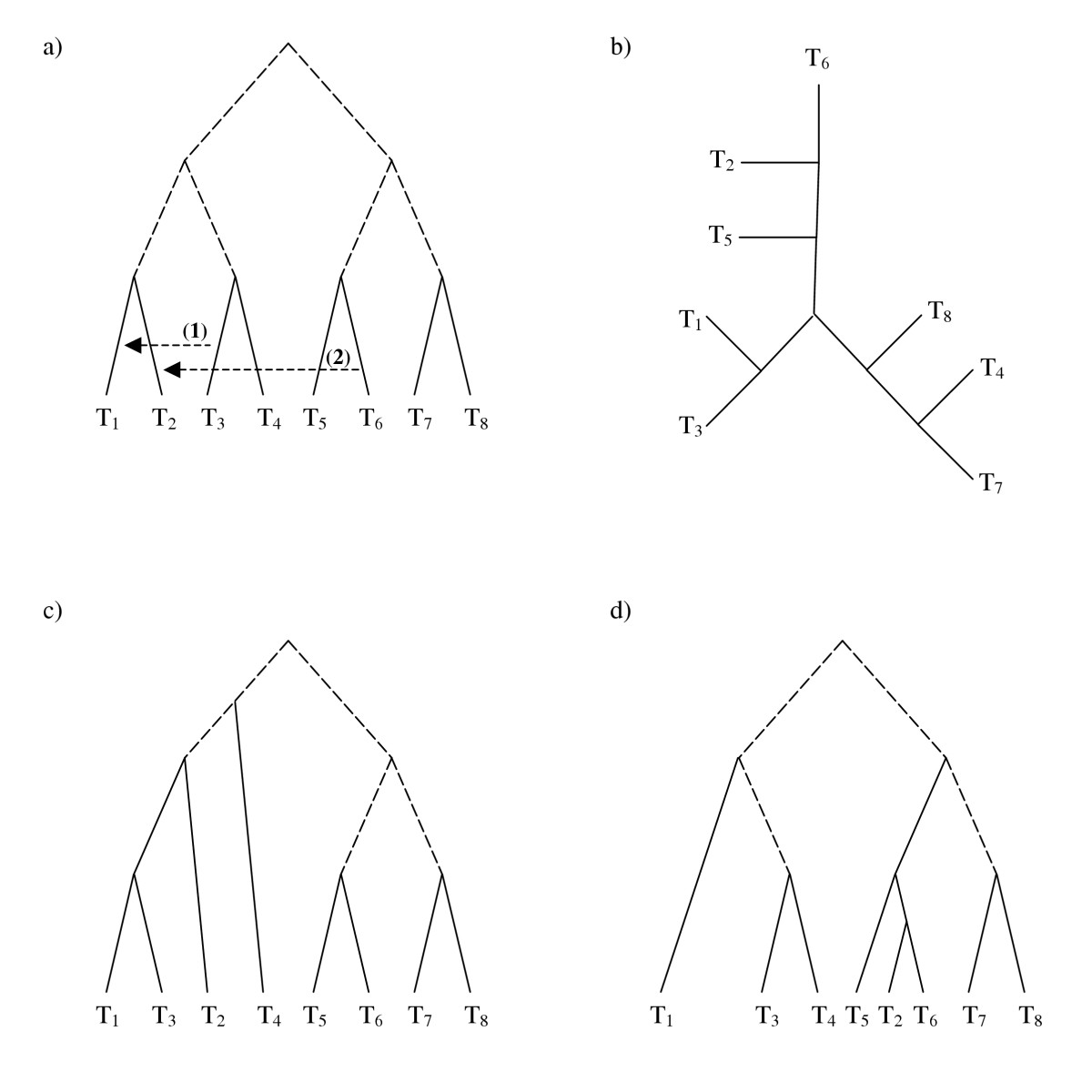 http://static-content.springer.com/image/art%3A10.1186%2F1471-2148-6-15/MediaObjects/12862_2005_Article_200_Fig9_HTML.jpg