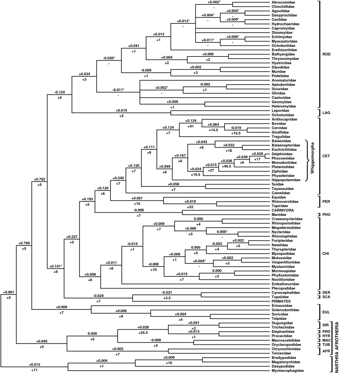 http://static-content.springer.com/image/art%3A10.1186%2F1471-2148-6-93/MediaObjects/12862_2006_Article_278_Fig2_HTML.jpg