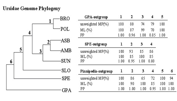 http://static-content.springer.com/image/art%3A10.1186%2F1471-2148-7-198/MediaObjects/12862_2007_Article_489_Fig3_HTML.jpg