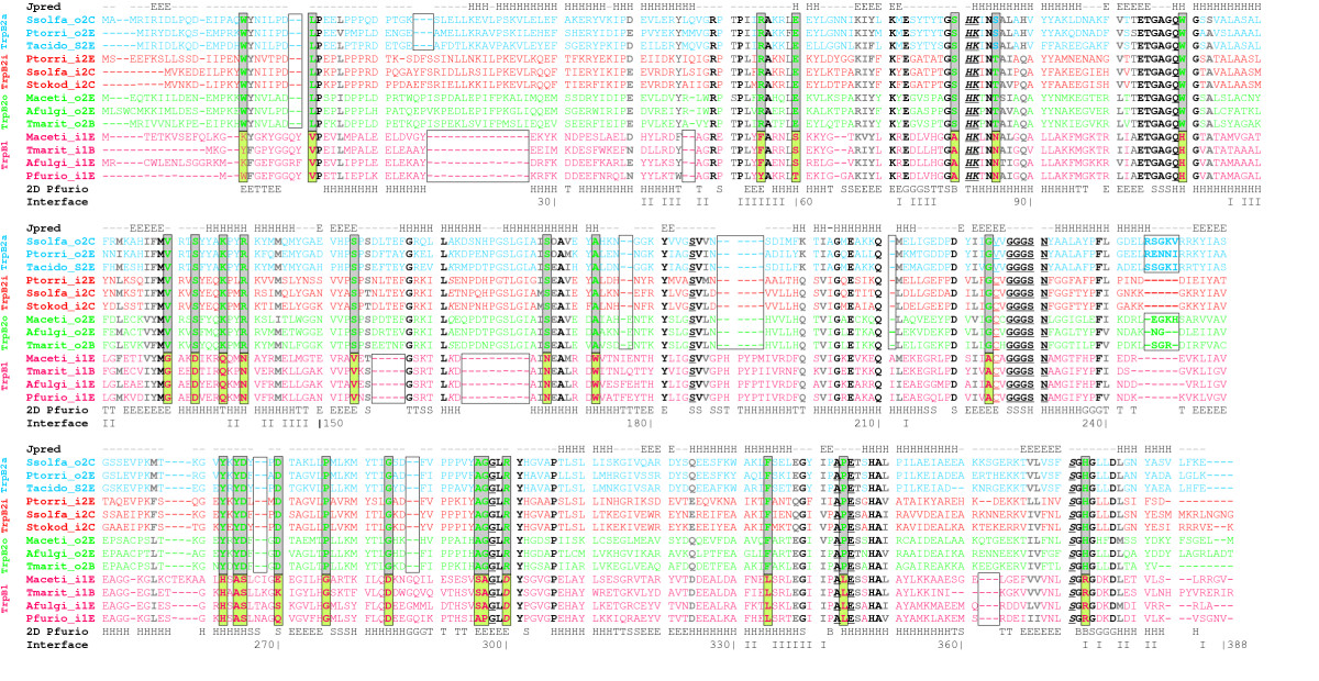 http://static-content.springer.com/image/art%3A10.1186%2F1471-2148-7-59/MediaObjects/12862_2007_Article_353_Fig5_HTML.jpg