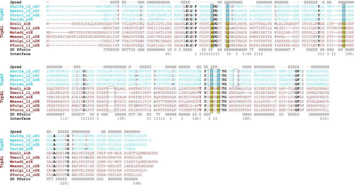 http://static-content.springer.com/image/art%3A10.1186%2F1471-2148-7-59/MediaObjects/12862_2007_Article_353_Fig6_HTML.jpg