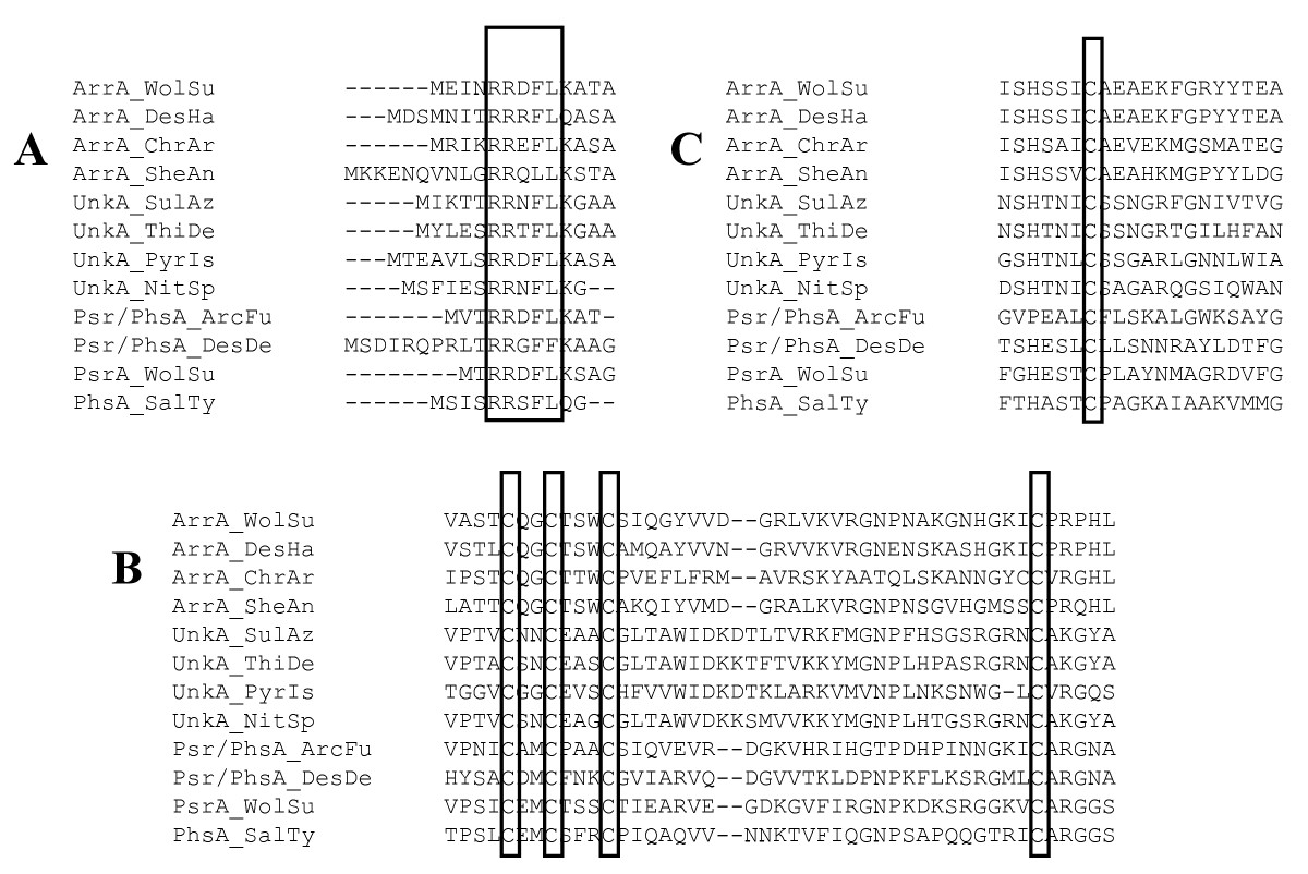 http://static-content.springer.com/image/art%3A10.1186%2F1471-2148-8-206/MediaObjects/12862_2008_Article_775_Fig1_HTML.jpg
