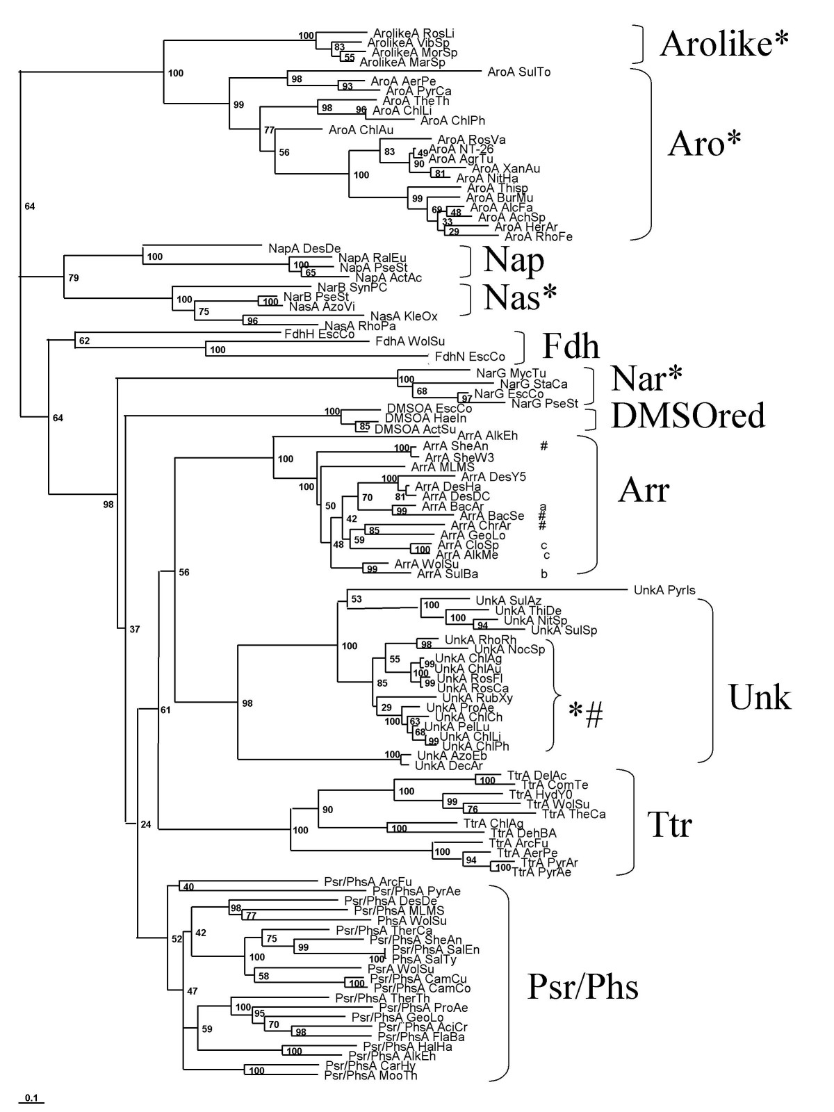 http://static-content.springer.com/image/art%3A10.1186%2F1471-2148-8-206/MediaObjects/12862_2008_Article_775_Fig2_HTML.jpg