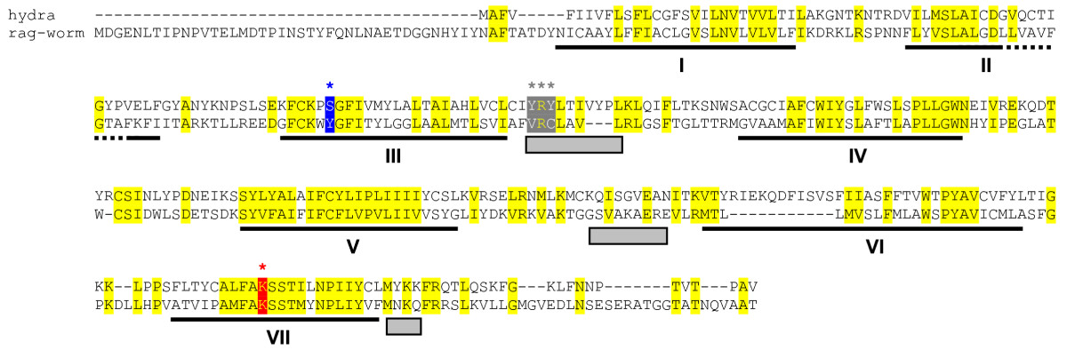 http://static-content.springer.com/image/art%3A10.1186%2F1471-2148-8-222/MediaObjects/12862_2008_Article_791_Fig4_HTML.jpg
