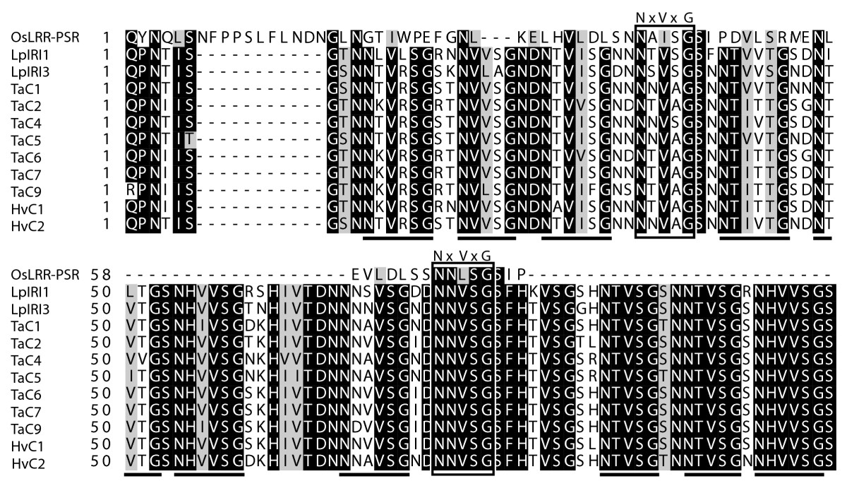 http://static-content.springer.com/image/art%3A10.1186%2F1471-2148-8-245/MediaObjects/12862_2008_Article_814_Fig4_HTML.jpg