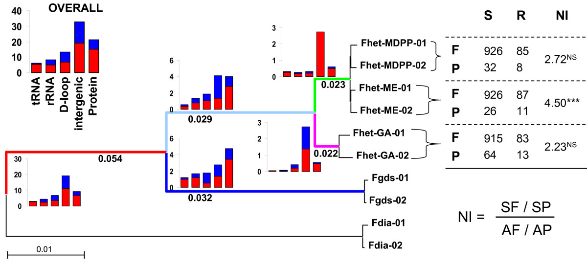 http://static-content.springer.com/image/art%3A10.1186%2F1471-2148-9-11/MediaObjects/12862_2008_Article_925_Fig3_HTML.jpg