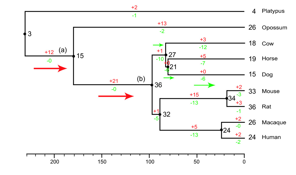 http://static-content.springer.com/image/art%3A10.1186%2F1471-2148-9-12/MediaObjects/12862_2008_Article_926_Fig2_HTML.jpg