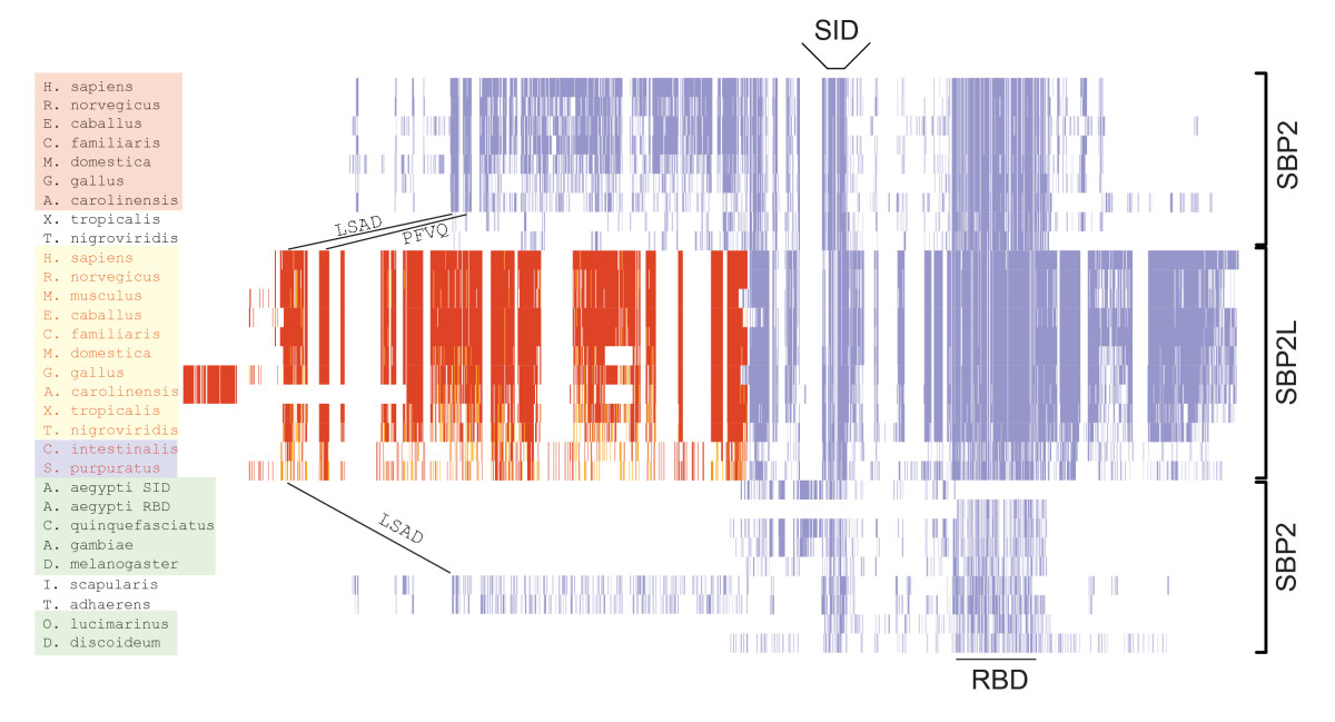 http://static-content.springer.com/image/art%3A10.1186%2F1471-2148-9-229/MediaObjects/12862_2009_Article_1143_Fig1_HTML.jpg