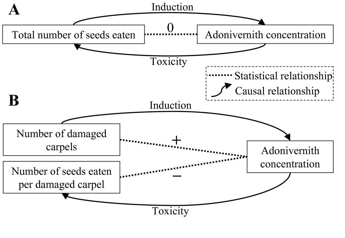 http://static-content.springer.com/image/art%3A10.1186%2F1471-2148-9-261/MediaObjects/12862_2009_Article_1175_Fig5_HTML.jpg