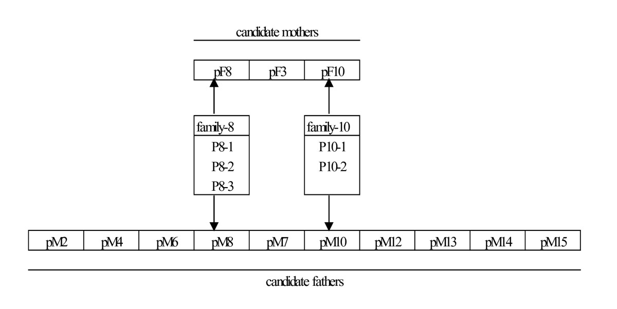 http://static-content.springer.com/image/art%3A10.1186%2F1471-2156-11-101/MediaObjects/12863_2010_Article_848_Fig2_HTML.jpg