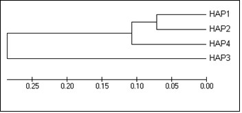 http://static-content.springer.com/image/art%3A10.1186%2F1471-2156-11-111/MediaObjects/12863_2010_Article_858_Fig5_HTML.jpg
