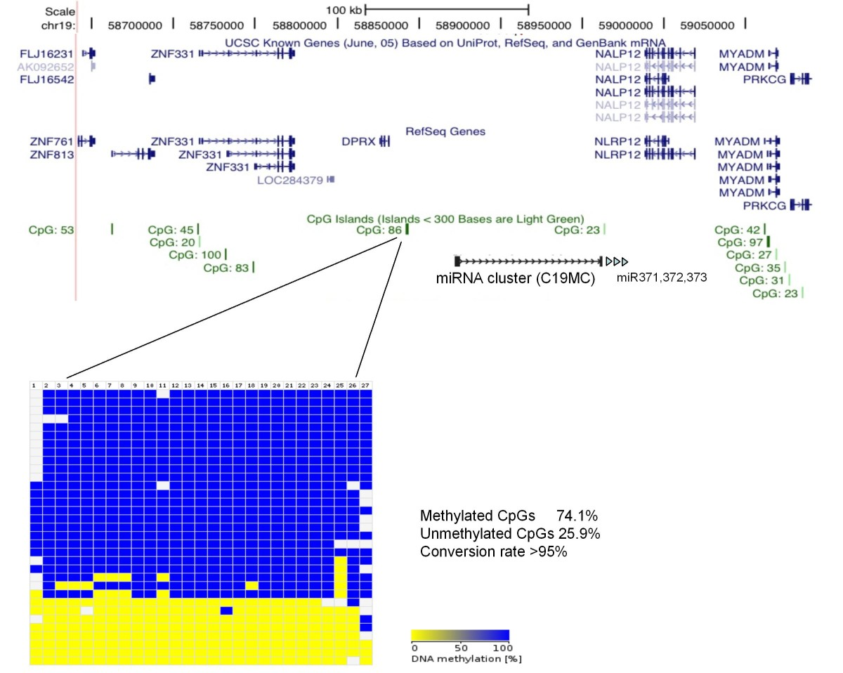 http://static-content.springer.com/image/art%3A10.1186%2F1471-2156-11-25/MediaObjects/12863_2009_Article_772_Fig7_HTML.jpg