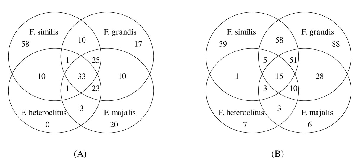 http://static-content.springer.com/image/art%3A10.1186%2F1471-2156-11-32/MediaObjects/12863_2010_Article_779_Fig4_HTML.jpg