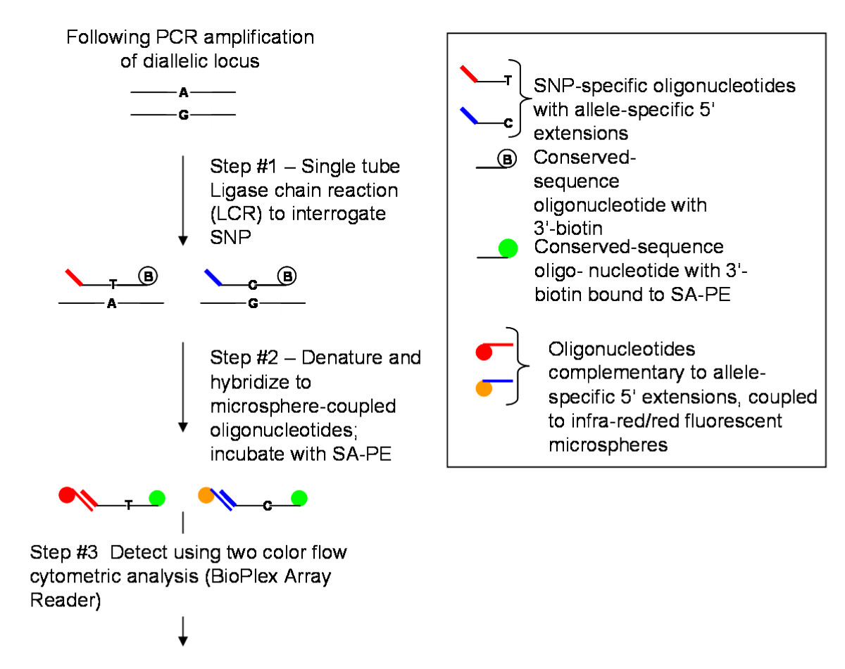 http://static-content.springer.com/image/art%3A10.1186%2F1471-2156-11-57/MediaObjects/12863_2009_Article_804_Fig6_HTML.jpg