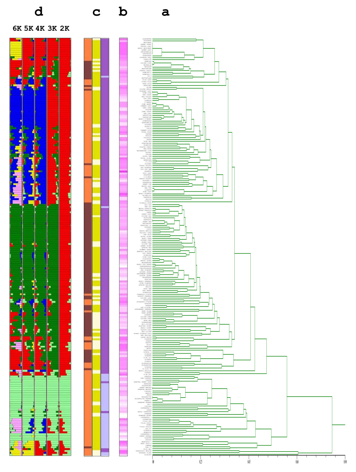 http://static-content.springer.com/image/art%3A10.1186%2F1471-2156-11-69/MediaObjects/12863_2010_Article_816_Fig1_HTML.jpg