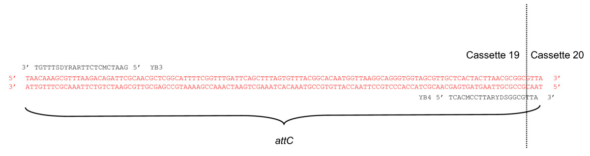 http://static-content.springer.com/image/art%3A10.1186%2F1471-2156-11-82/MediaObjects/12863_2010_Article_829_Fig1_HTML.jpg