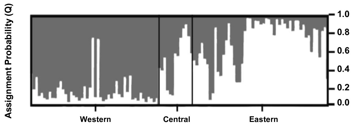 http://static-content.springer.com/image/art%3A10.1186%2F1471-2156-11-9/MediaObjects/12863_2009_Article_756_Fig2_HTML.jpg