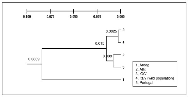 http://static-content.springer.com/image/art%3A10.1186%2F1471-2156-12-22/MediaObjects/12863_2010_884_Fig7_HTML.jpg