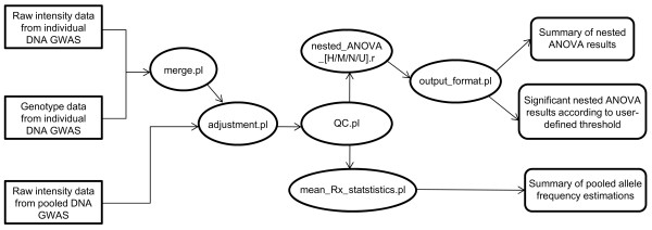 http://static-content.springer.com/image/art%3A10.1186%2F1471-2156-13-1/MediaObjects/12863_2011_970_Fig1_HTML.jpg