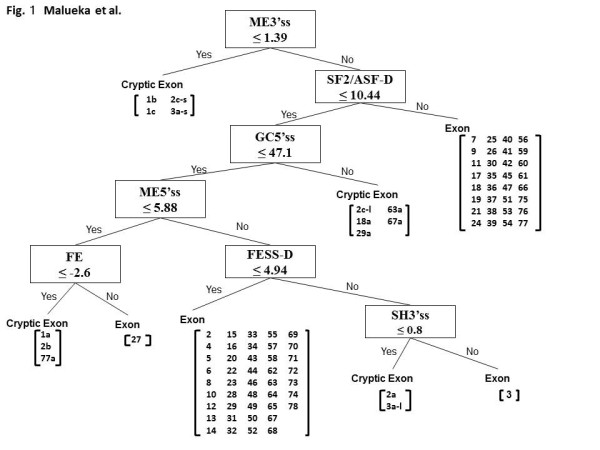http://static-content.springer.com/image/art%3A10.1186%2F1471-2156-13-23/MediaObjects/12863_2012_983_Fig1_HTML.jpg