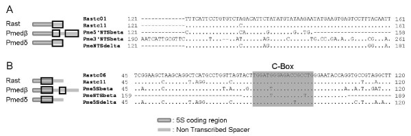 http://static-content.springer.com/image/art%3A10.1186%2F1471-2156-13-33/MediaObjects/12863_2012_1012_Fig2_HTML.jpg