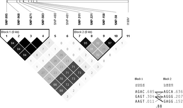 http://static-content.springer.com/image/art%3A10.1186%2F1471-2156-13-66/MediaObjects/12863_2012_1030_Fig2_HTML.jpg
