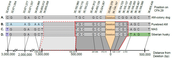 http://static-content.springer.com/image/art%3A10.1186%2F1471-2156-14-27/MediaObjects/12863_2013_1092_Fig5_HTML.jpg