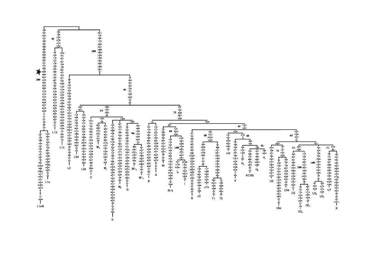 http://static-content.springer.com/image/art%3A10.1186%2F1471-2156-2-13/MediaObjects/12863_2001_Article_17_Fig1_HTML.jpg
