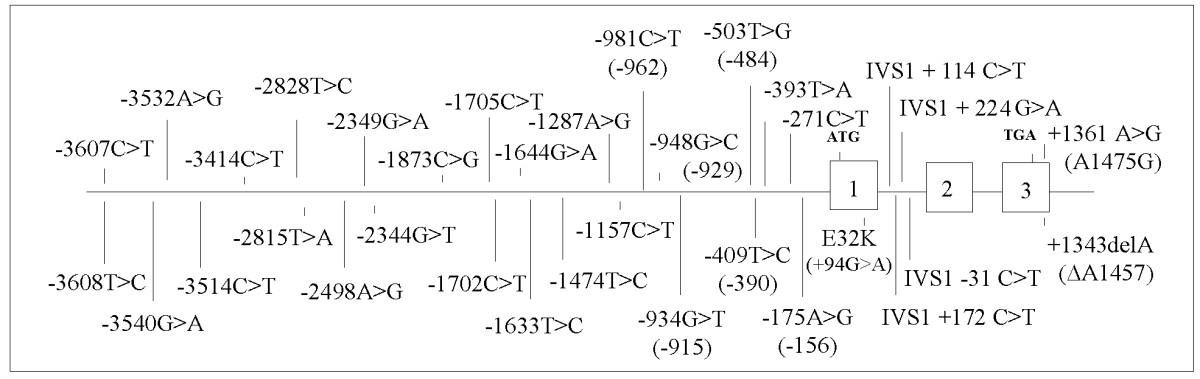 http://static-content.springer.com/image/art%3A10.1186%2F1471-2156-6-19/MediaObjects/12863_2004_Article_225_Fig1_HTML.jpg