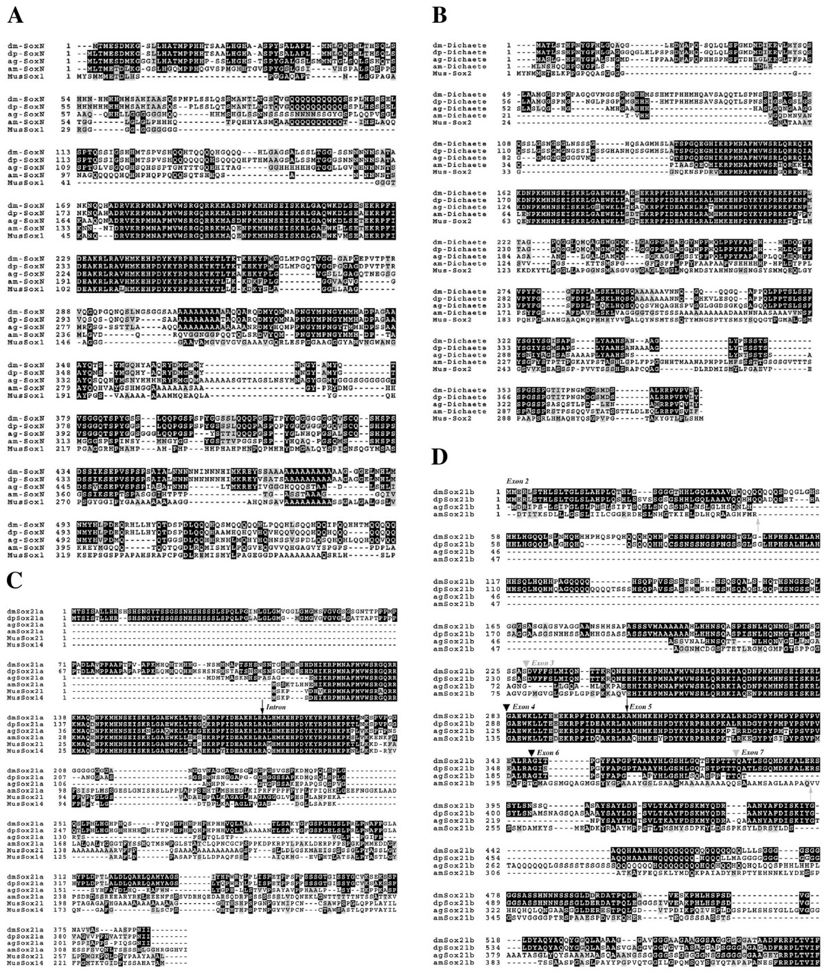 http://static-content.springer.com/image/art%3A10.1186%2F1471-2156-6-26/MediaObjects/12863_2005_Article_232_Fig1_HTML.jpg