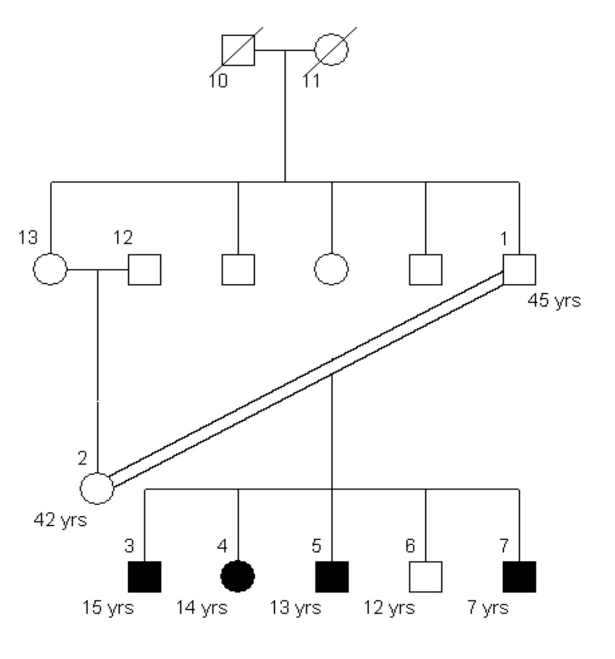 http://static-content.springer.com/image/art%3A10.1186%2F1471-2156-6-7/MediaObjects/12863_2004_Article_213_Fig4_HTML.jpg