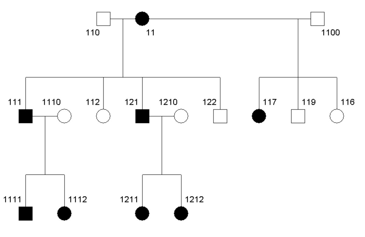 http://static-content.springer.com/image/art%3A10.1186%2F1471-2156-6-7/MediaObjects/12863_2004_Article_213_Fig6_HTML.jpg