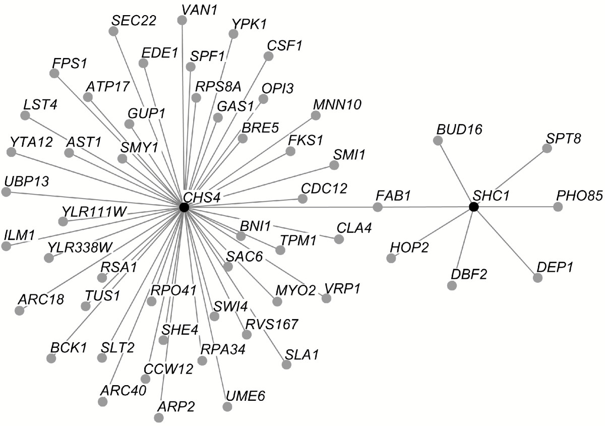 http://static-content.springer.com/image/art%3A10.1186%2F1471-2156-6-8/MediaObjects/12863_2004_Article_214_Fig5_HTML.jpg