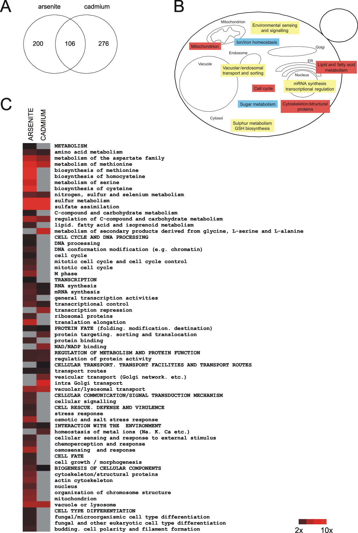 http://static-content.springer.com/image/art%3A10.1186%2F1471-2164-10-105/MediaObjects/12864_2008_Article_1989_Fig1_HTML.jpg