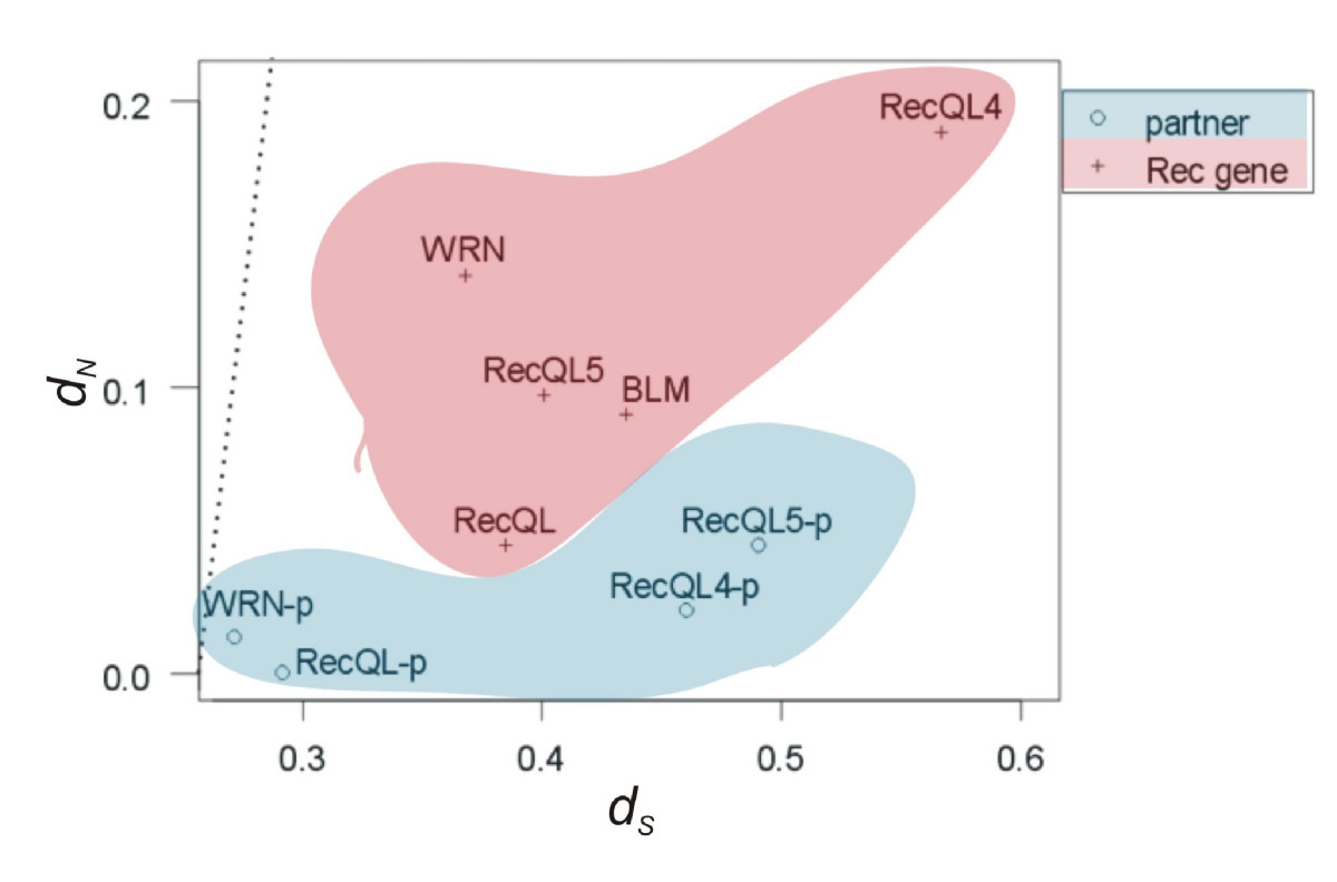 http://static-content.springer.com/image/art%3A10.1186%2F1471-2164-10-189/MediaObjects/12864_2008_Article_2073_Fig7_HTML.jpg