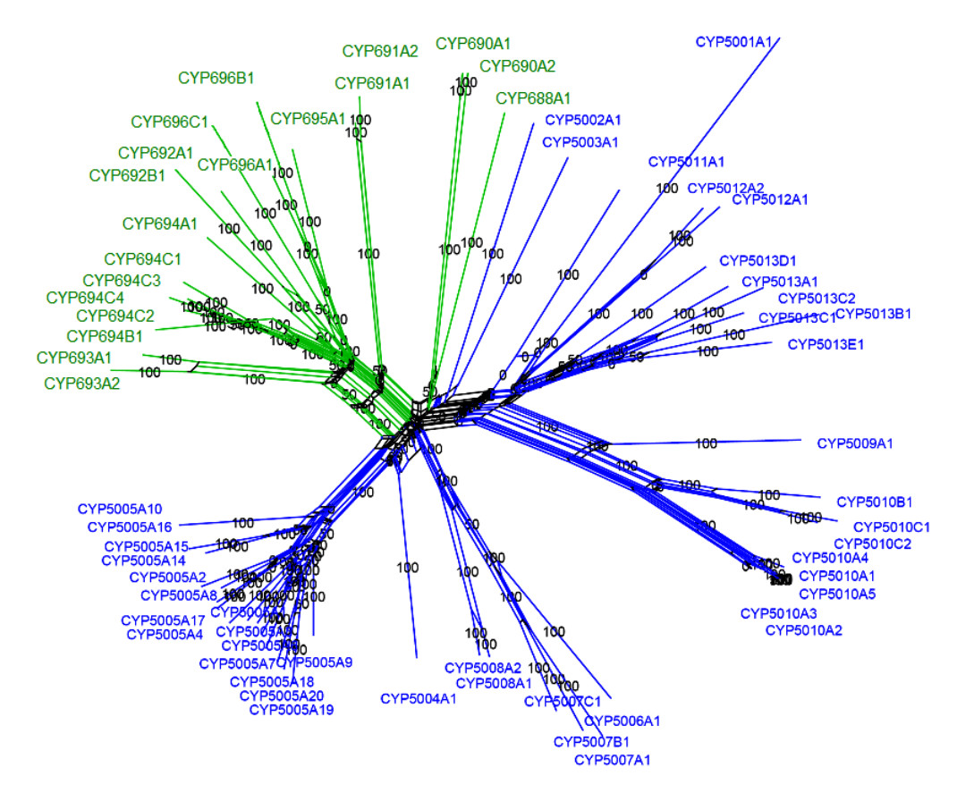 http://static-content.springer.com/image/art%3A10.1186%2F1471-2164-10-208/MediaObjects/12864_2008_Article_2092_Fig3_HTML.jpg