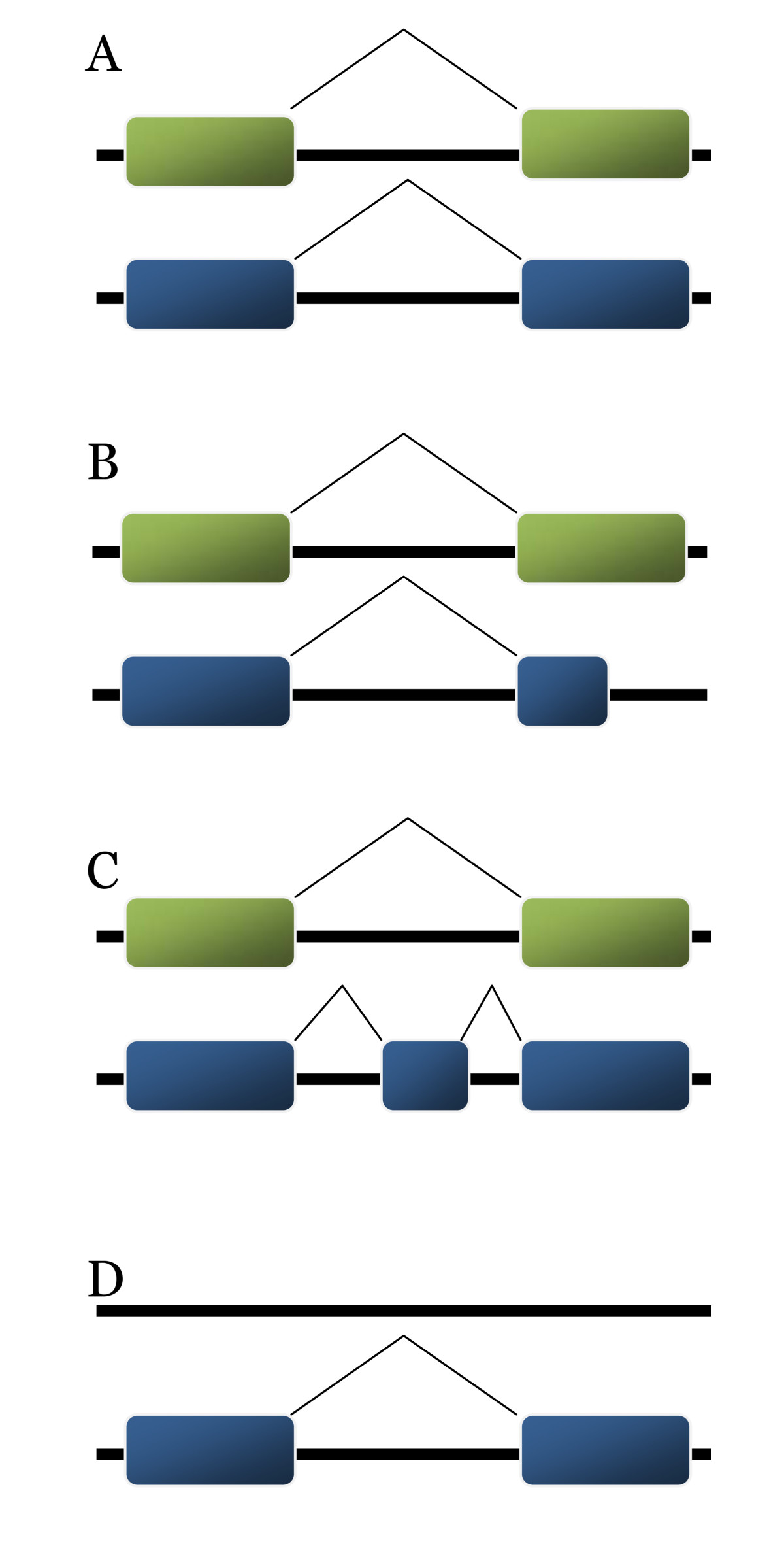 http://static-content.springer.com/image/art%3A10.1186%2F1471-2164-10-210/MediaObjects/12864_2009_Article_2094_Fig1_HTML.jpg