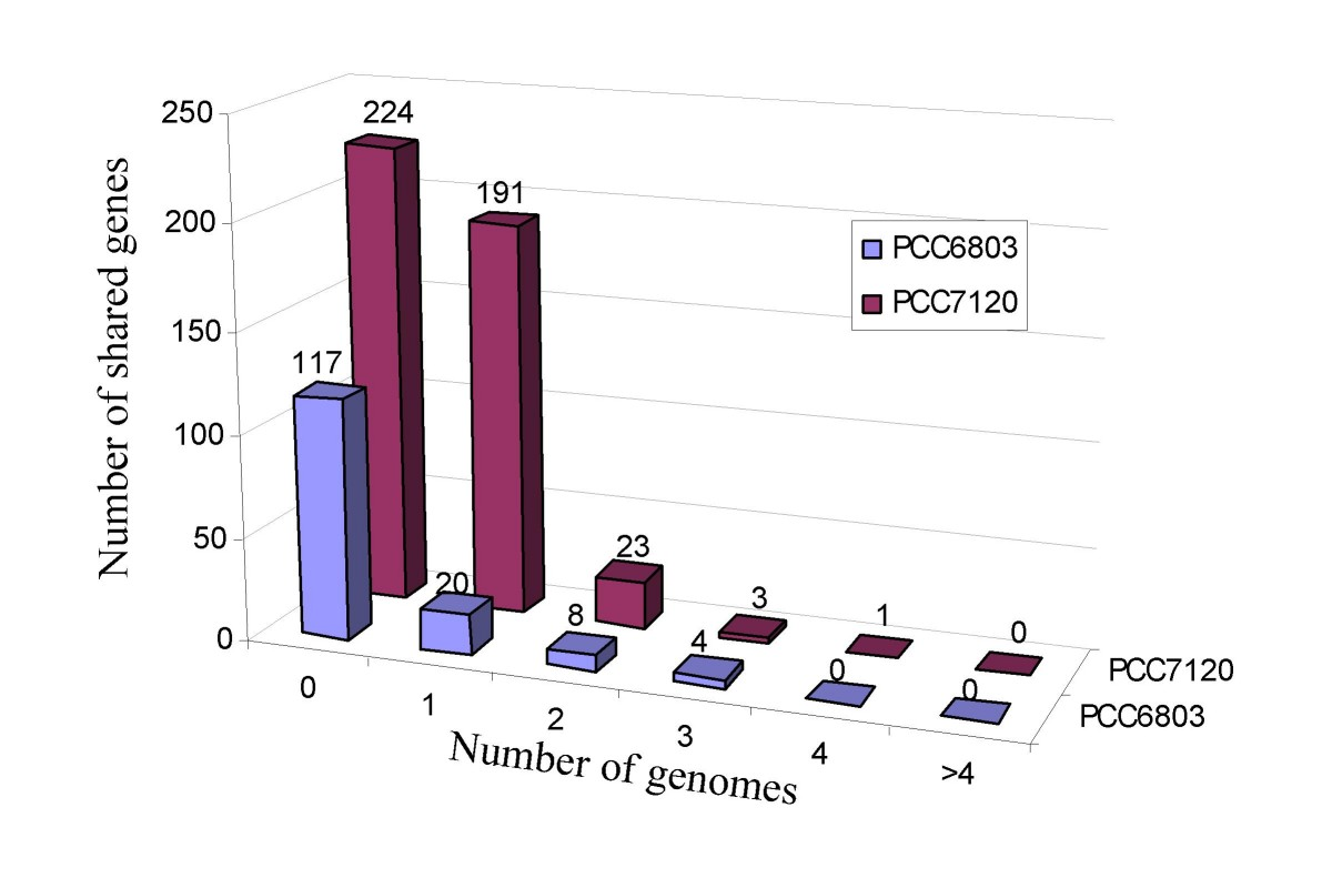 http://static-content.springer.com/image/art%3A10.1186%2F1471-2164-10-23/MediaObjects/12864_2008_Article_1907_Fig3_HTML.jpg