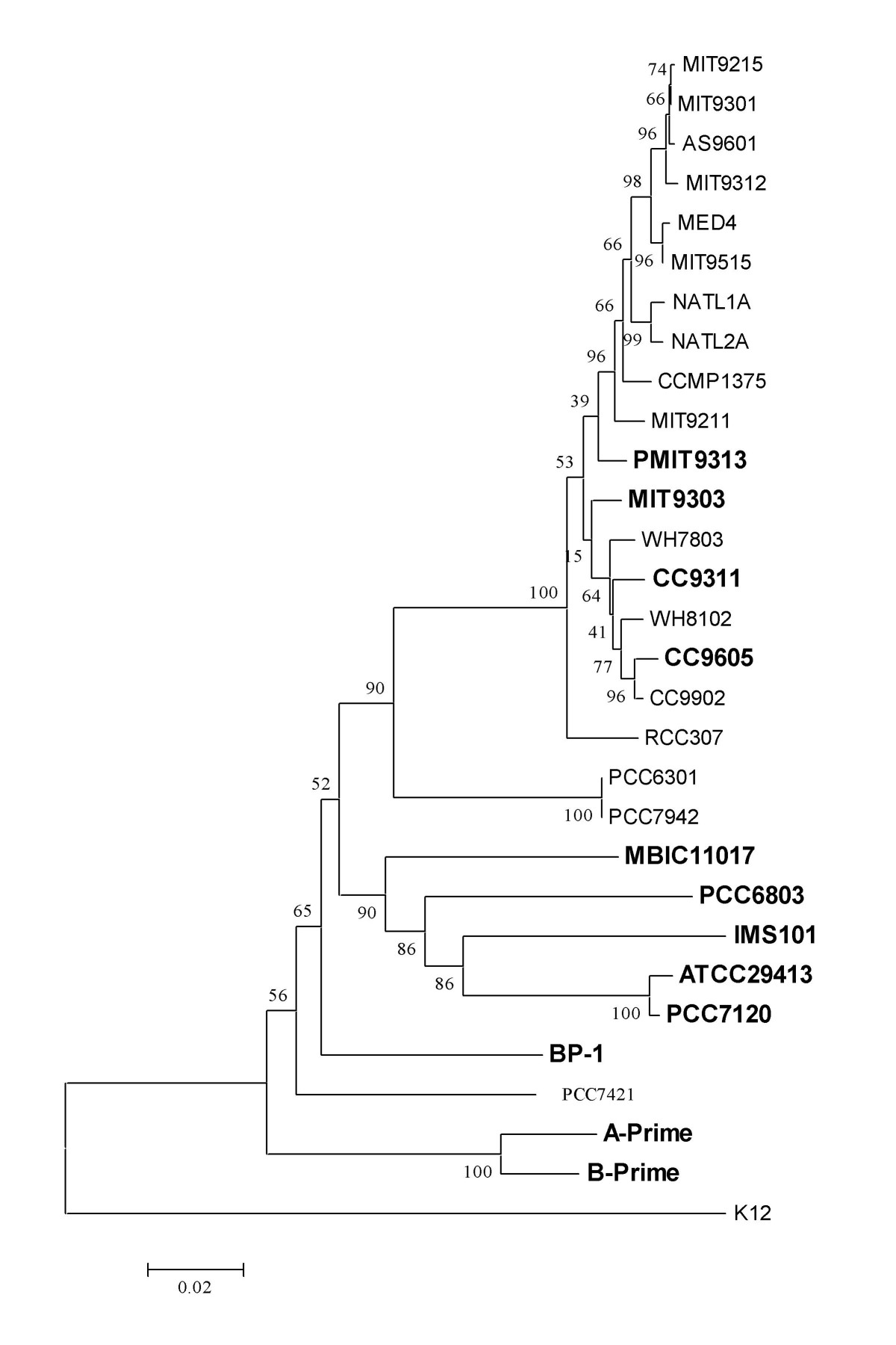 http://static-content.springer.com/image/art%3A10.1186%2F1471-2164-10-23/MediaObjects/12864_2008_Article_1907_Fig4_HTML.jpg
