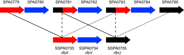 http://static-content.springer.com/image/art%3A10.1186%2F1471-2164-10-36/MediaObjects/12864_2008_Article_1920_Fig1_HTML.jpg