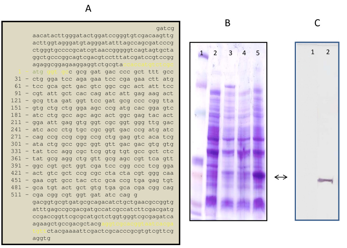 http://static-content.springer.com/image/art%3A10.1186%2F1471-2164-10-397/MediaObjects/12864_2008_Article_2281_Fig10_HTML.jpg