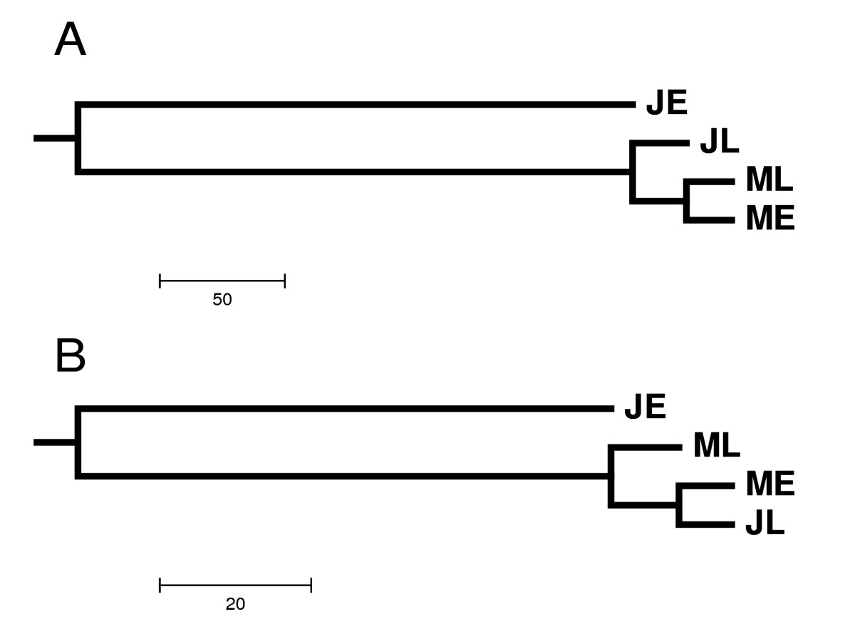 http://static-content.springer.com/image/art%3A10.1186%2F1471-2164-10-41/MediaObjects/12864_2008_Article_1925_Fig3_HTML.jpg