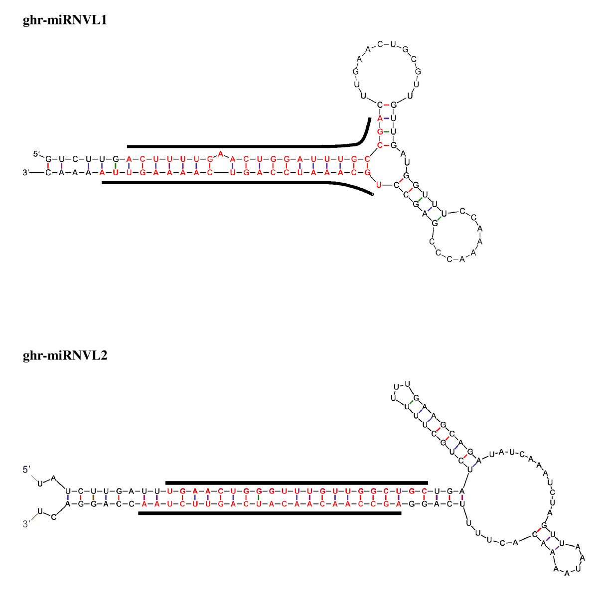 http://static-content.springer.com/image/art%3A10.1186%2F1471-2164-10-457/MediaObjects/12864_2009_Article_2341_Fig5_HTML.jpg