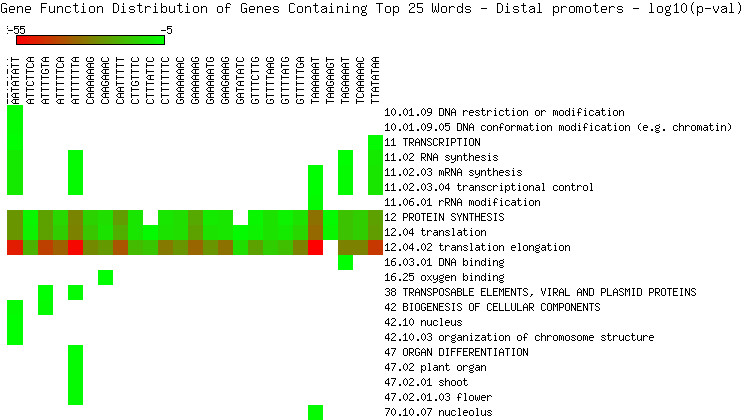 http://static-content.springer.com/image/art%3A10.1186%2F1471-2164-10-463/MediaObjects/12864_2009_Article_2347_Fig10_HTML.jpg