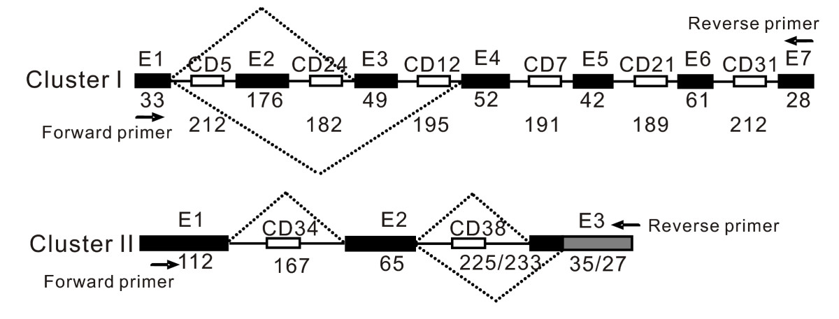 http://static-content.springer.com/image/art%3A10.1186%2F1471-2164-10-515/MediaObjects/12864_2009_Article_2399_Fig6_HTML.jpg