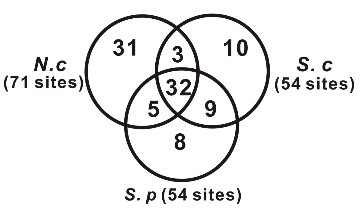 http://static-content.springer.com/image/art%3A10.1186%2F1471-2164-10-515/MediaObjects/12864_2009_Article_2399_Fig7_HTML.jpg