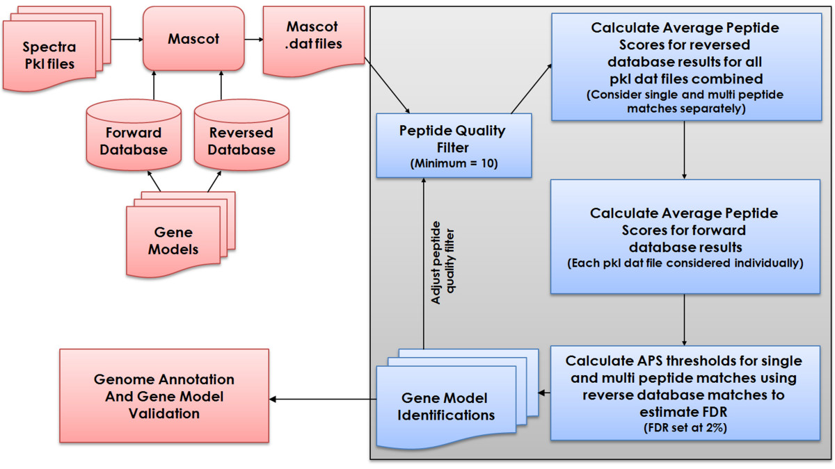 http://static-content.springer.com/image/art%3A10.1186%2F1471-2164-10-61/MediaObjects/12864_2008_Article_1945_Fig1_HTML.jpg