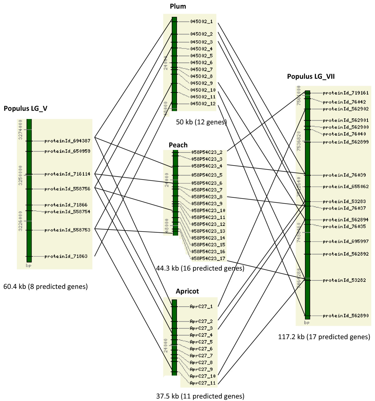 http://static-content.springer.com/image/art%3A10.1186%2F1471-2164-10-76/MediaObjects/12864_2008_Article_1960_Fig1_HTML.jpg